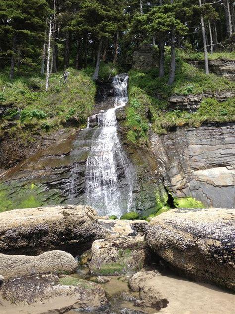 oswald west state park oregon favorite places spaces