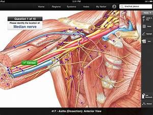 Netter U0026 39 S Anatomy Atlas App Ranking And Store Data