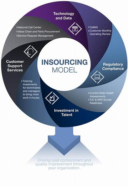 Insourcing Service Support Centralized Structure Organization Fm