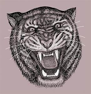 Tiger Head Wild Animal Artistic Lines