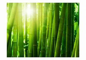Was Passt Zu Bambus : vlies fototapete sonne und bambus orient fototapeten ~ Watch28wear.com Haus und Dekorationen