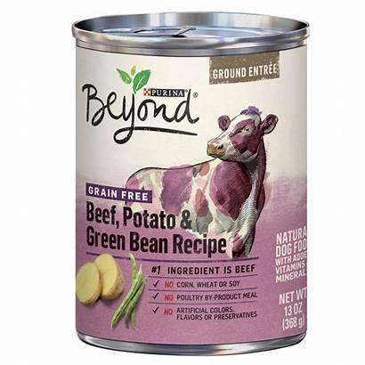 Purina Beyond Dog Grain Wet Beef Potato