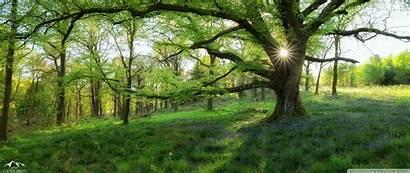 Spring Landscapes Earth Desktop Wallpapers 4k Ultrawide