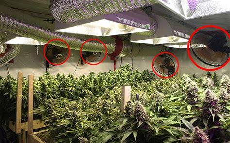 indoor grow tent how to setup grow room ventilation zenpype