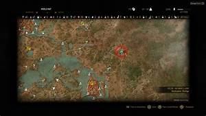 The Witcher 3 Guide  How To Get Feline Armor Set And