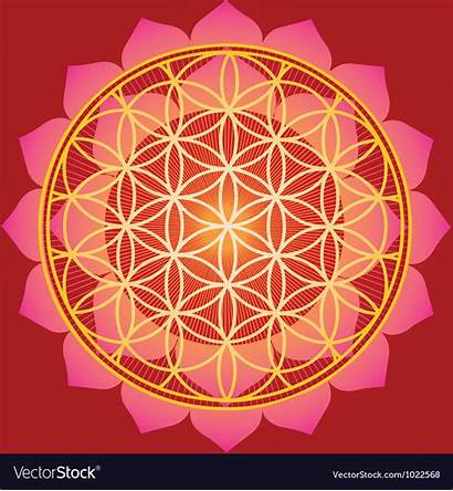 Geometry Sacred Mandala Flower Vector Royalty Vectors