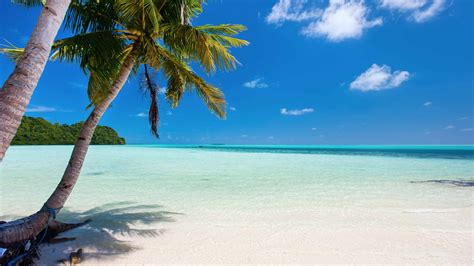 british virgin islands cruise  cruises  bvi