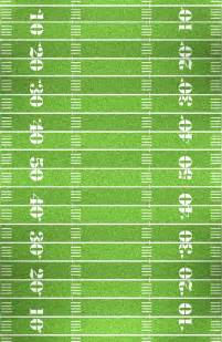Football Field Overview