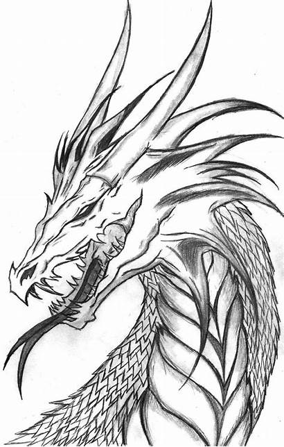 Dragon Realistic Coloring Pages Drawing Drawings Pencil