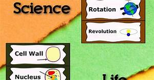Science Word Wall Bundle - Chemistry, Force & Motion, Life ...