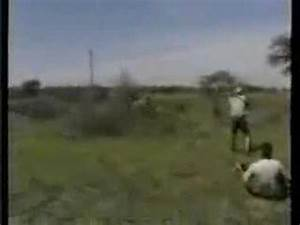Lion attack hunting safari Africa - YouTube