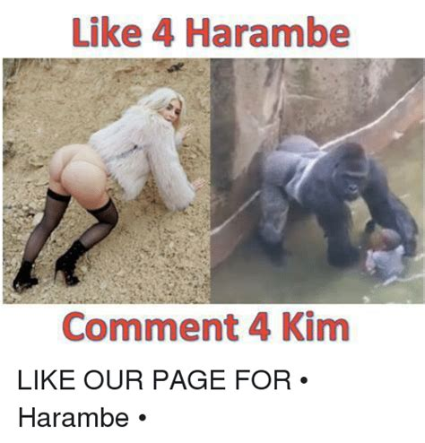 Dicks Out For Harambe Memes - 25 best memes about for harambe for harambe memes