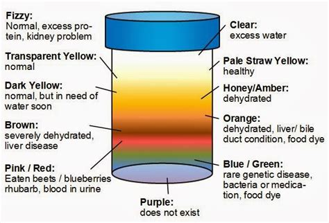 what does the color of urine what does urine color say about your health secretly healthy
