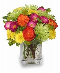 Neon Splash Bouquet Vase Arrangements
