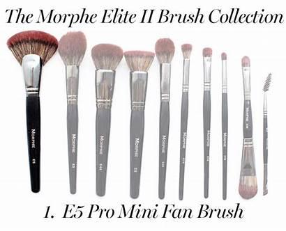 Morphe Brushes Makeup Brush Glamour Elite Buying