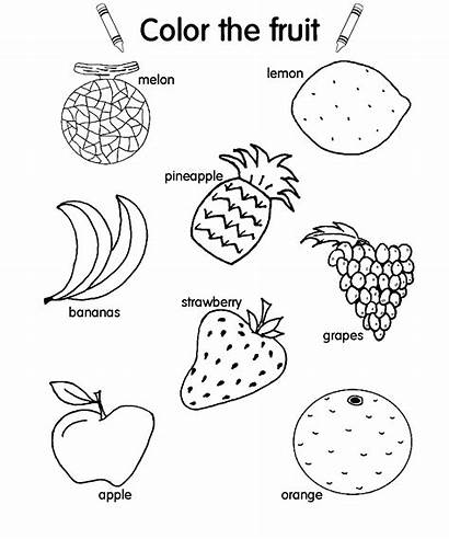 Salad Fruit Coloring Pages Drawing Colouring Vegetable