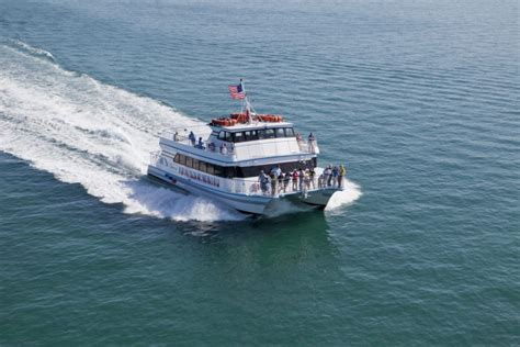 Glass Bottom Boat Tours In Florida by The Amazing Glass Bottomed Boat Tour In Florida Will Bring