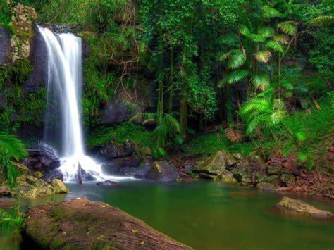 wonderful tropical waterfall  jungle green vegetation