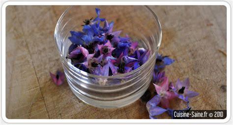 cuisine coriandre cuisine bio test les fleurs comestibles la fleur