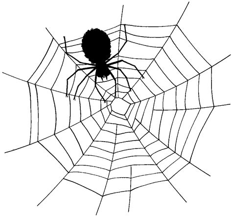 free web page clipart free spider web clipart 3 pictures clipartix
