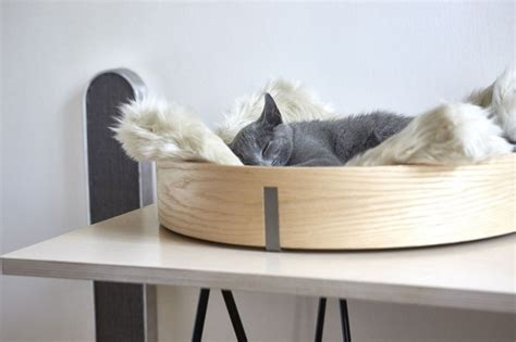 Chic And Cozy Cat Beds