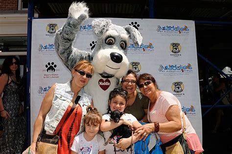 Th Annual Maddies Pet Adoption Days Returns May  June
