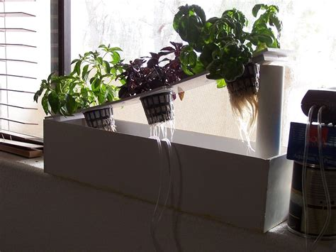 Window Sill Hydroponics build your own hydroponic window herb garden system