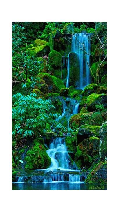 Waterfall Nature Water Cool Amazing Gifs Evergreen