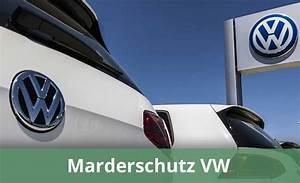 Marder Im Auto : marderschutz vw was bietet volkswagen an infos alternativen ~ Yasmunasinghe.com Haus und Dekorationen