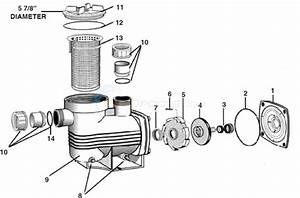Waterco Supamite Pump Parts