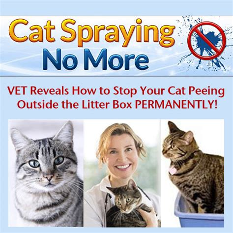 cat spraying no more clickbank