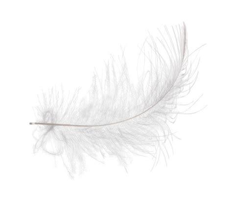angel feather christmas poem crafts thriftyfun