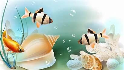 Fish Resolution Wallpapers Clipart Illustrazione Subacqueo Tropicale