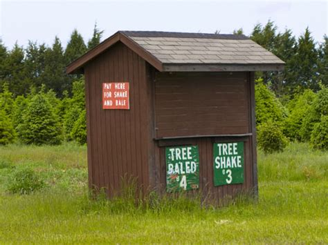 Links « Tammen Treeberry Farm