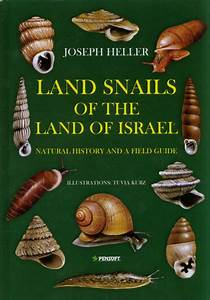 Land Snails Of The Land Of Israel  Natural History And A