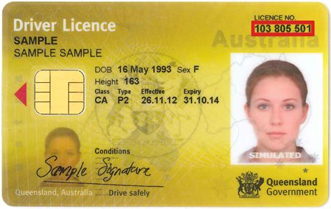 driving licence template word  printable