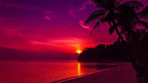 foto palme shop quadri moderni poster paesaggio 100x70 mare tramonto isola palme rosso pixelcomunicazione it