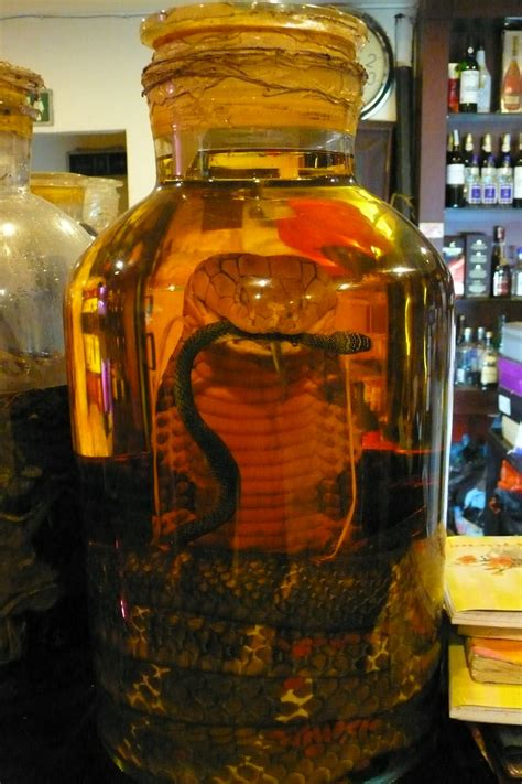 cobra infused alcohol wow