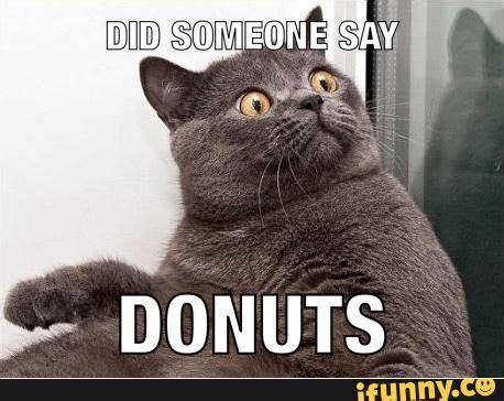 Funny Donut Meme - best 25 donut meme ideas on pinterest silly memes pizza gain image and crazy mom meme