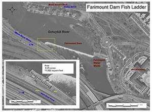 Philly H2o  Fairmount Dam Fishway