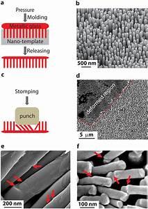 Fabrication And Deformation Morphology Of Nano