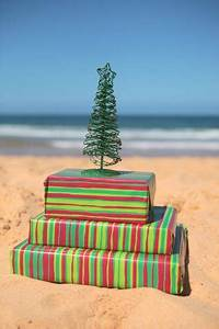 5 Things to Love about Christmas in the Caribbean Travefy