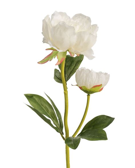 artificial peony flower 4 peony silk flower stems for casual decorating at