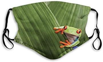 Amazon.com: frog mask