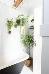 Plante Verte Salle De Bain : 48 id es d co salle de bain avec plantes et fleurs de design ~ Melissatoandfro.com Idées de Décoration