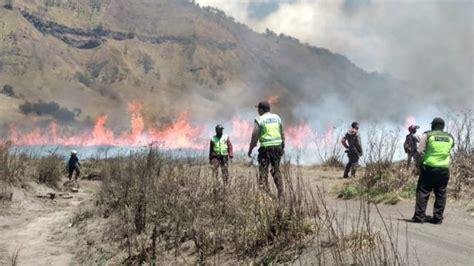 puluhan hektar sabana  bukit teletubbies bromo terbakar