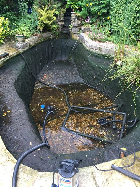 Clean Backyard Pond - pond cleaning pond uk