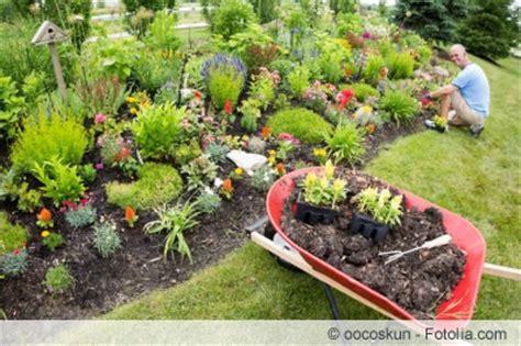 Rosenbeet Anlegen Beispiele by Anleitung Zum Gestalten Blumenbeeten Hausgarten Net