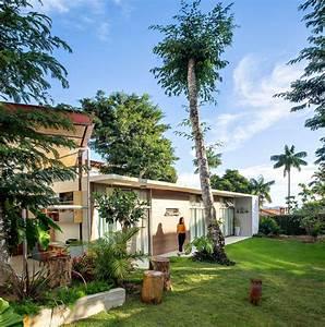 House Between Trees    Ateli U00ea De Arquitetura L U00edquida