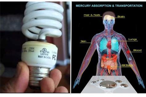 if you use fluorescent light bulbs in your house you